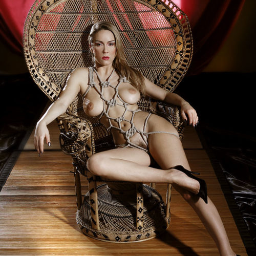 shibari bondage fetish rope corde chair1